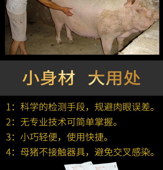 養殖設備_養豬設備_母豬產床_豬料槽_豬人工授精
